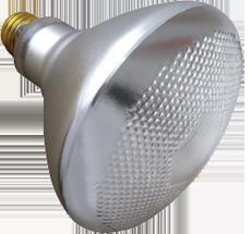 shatterproof-rough-service-bulb-teflon