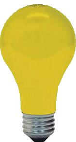 bug bulb